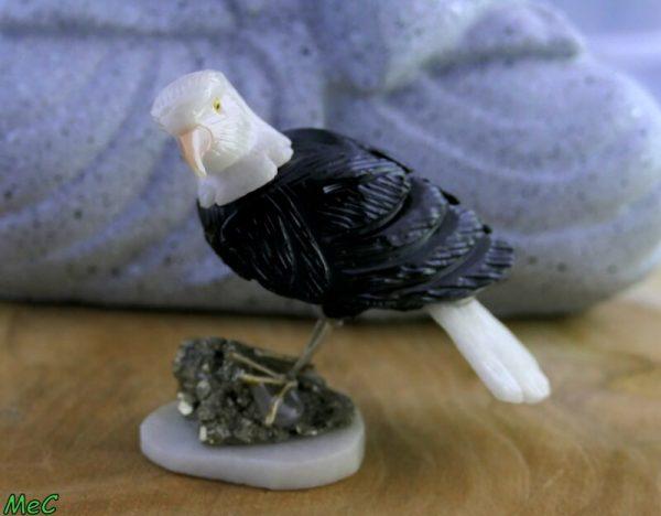 Aigle sur pyrite minéraux et cristaux